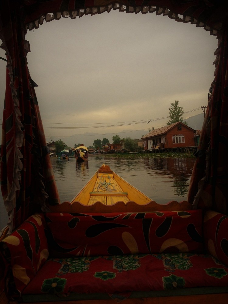 evening-dal-lake-srinagar