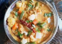 Veg Kurma / Vegetable Korma